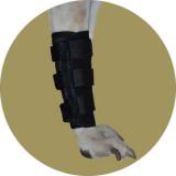 Ногавки для собак на передние лапы