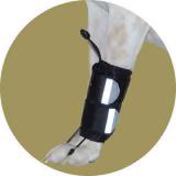 Фиксатор-стабилизатор для передней лапы для собак