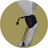 Растяжка-стабилизатор для задних лап для собак