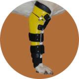 Ортез локтевого сустава для собаки