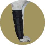 Бандаж для лучезапястного сустава для собак