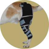 Коленный бандаж для собаки
