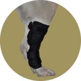 Ногавки для собак